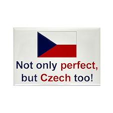 Perfect Czech Magnet (3x2)