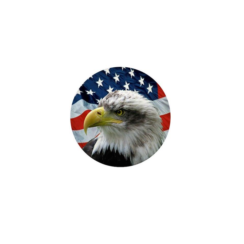 eagle american flag 2 25 magnet 100 pa $ 107 99 bald eagle american