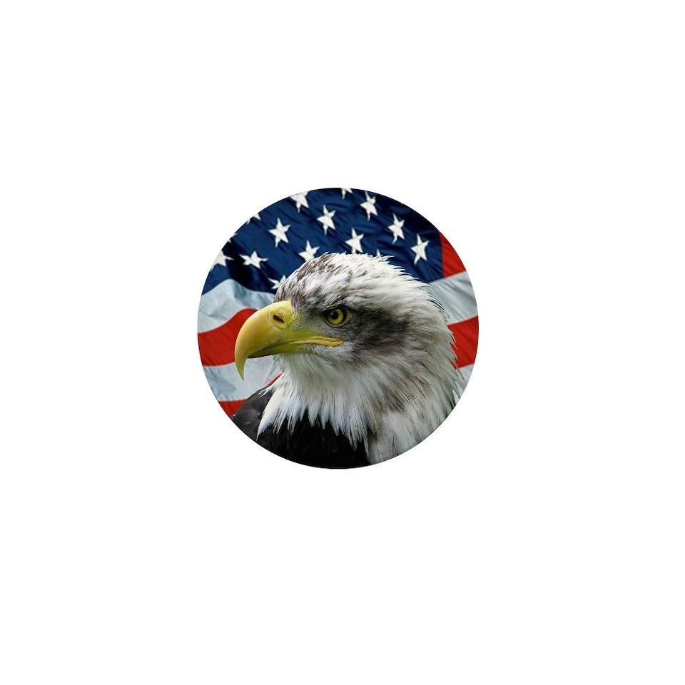 10 pac $ 17 99 bald eagle american flag 2 25 magnet 100 pa $ 107 99