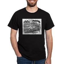 Battle of Antietam Military Gift Black T-Shirt