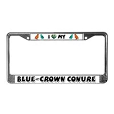 Blue-Crowned Conure License Plate Frame