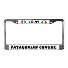 Patagonian Conure License Plate Frame
