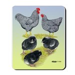 Plymouth Rock Rooster, Hen & Mousepad