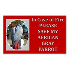 Parrots Rectangle Sticker 50 pk)