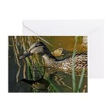 Backyard Duck 2 Greeting Card