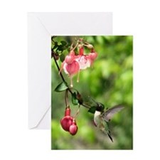 Black-chinned HB Greeting Card