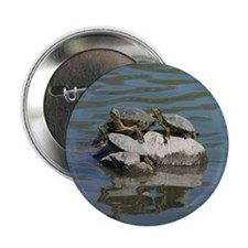 "WILDLIFE 2.25"" Button (10 pack)"