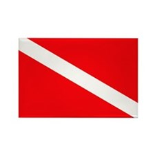 Diver Down Rectangle Magnet (10 pack)
