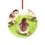 Silver Grey Dorking Chicks Ornament (Round)