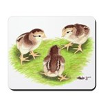 Silver Grey Dorking Chicks Mousepad
