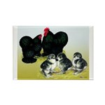 Black Cochin Family Rectangle Magnet (10 pack)