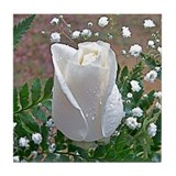 White Rose Tile Coaster