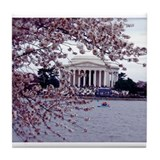 Cherry Blossoms, Washington, DC Tile Coaster