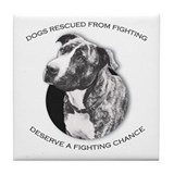 Fighting Chance Tile Coaster
