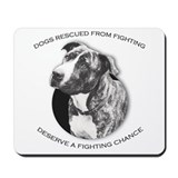 Fighting Chance Mousepad
