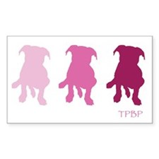 TPBP Pink Rectangle Decal