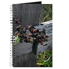Fence Berries Journal