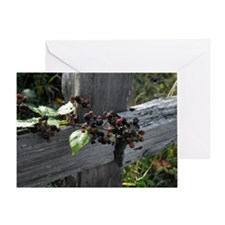 Fence Berries Greeting Card