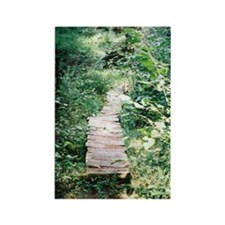 Trail Photo: Old Boardwalk Magnet
