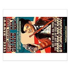 16x20 Snake Oil Poster