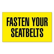 Fasten Your Seatbelts Decal