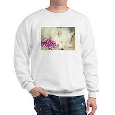 Cool Sammie Sweatshirt