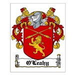 O'Leahy Coat of Arms Small Poster