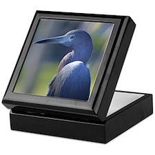 Little Blue Heron Portrait - Keepsake Box