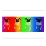 Rainbow (Package of 8)