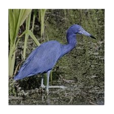 Little Blue Heron -Tile Coaster
