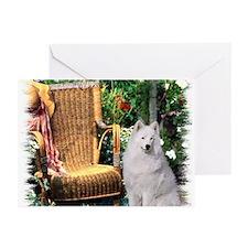 Samoyed Art Greeting Cards (Pk of 20)
