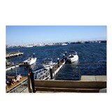 Fremantle Harbour Postcards (Package of 8)