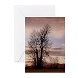 As the Day Ends -Greeting Cards (Pk of 10)