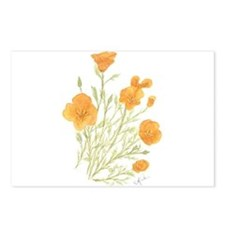 California Poppy Postcards (Package of 8)