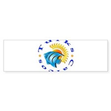tnc sunfish Bumper Sticker (10 pk)