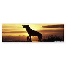 """""""Howling Wolf"""" Bumper Bumper Sticker"""
