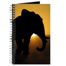 Bull Elephant Journal