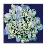 BLUE HYDRANGEAS Tile Coaster