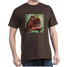Orangutan's T-Shirt