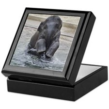 Asian Elephant Keepsake Box