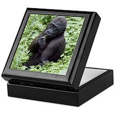 Relaxing Young Gorilla Keepsake Box