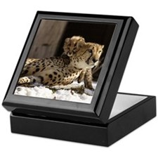 Mom and Baby Cheetah Keepsake Box