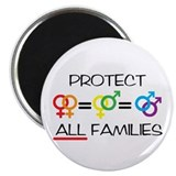 "Protect ALL Families 2.25"" Magnet (10 pack)"