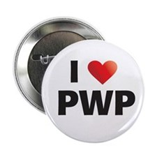 "Roswell Fanfiction 2.25"" Button"