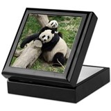 Mom &amp; Baby Giant Pandas Keepsake Box