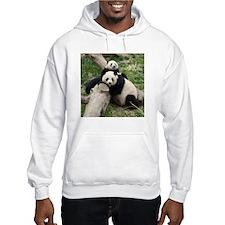Mom & Baby Giant Pandas Hooded Sweatshirt