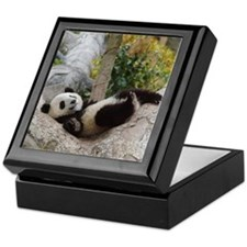 Giant Panda Keepsake Box
