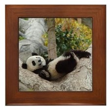 Giant Panda Framed Tile