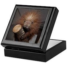 Porcupine Keepsake Box