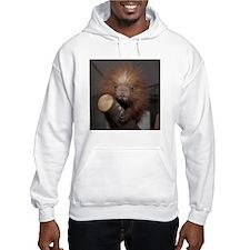 Porcupine Hooded Sweatshirt